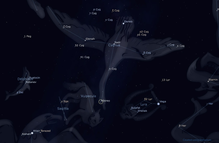 Image: Star chart showing constellation Cygnus.