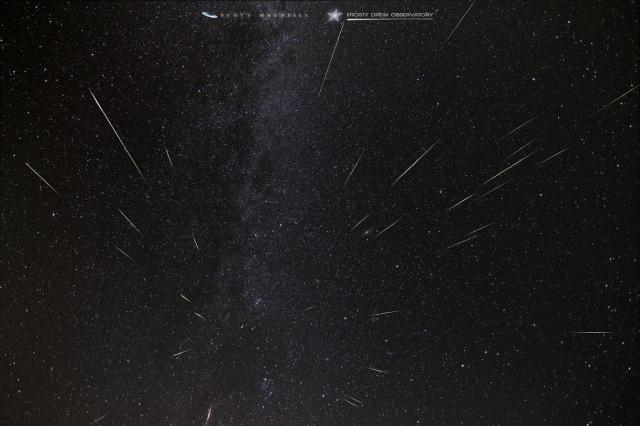 Photo: Five-hour view of Perseids meteor shower by Scott MacNeill.