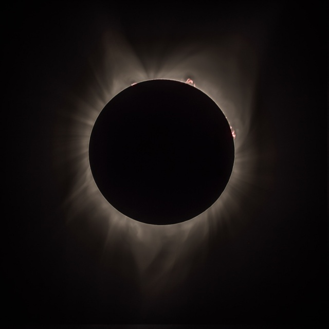 Photo: Totality Composite showing Corona, Prominences, and Earthshine. Credit: Chris Christe