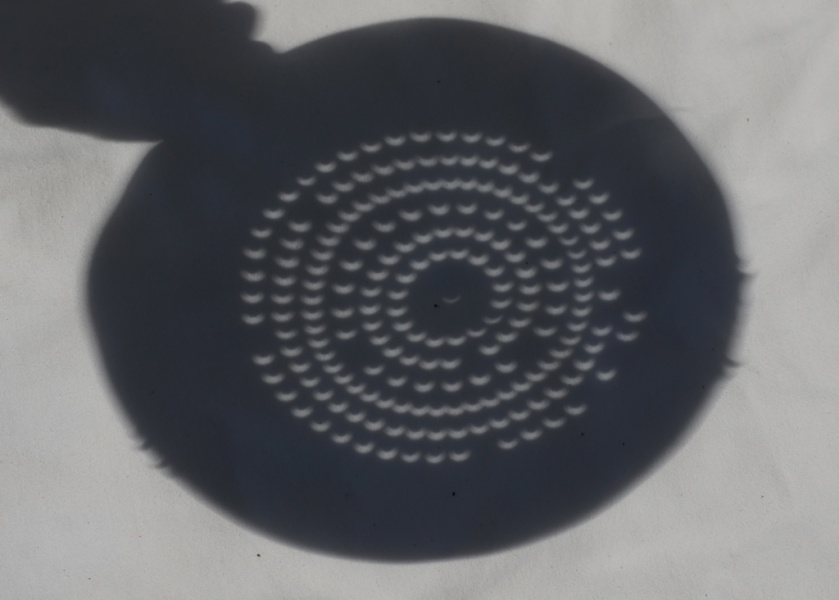 Photo: Colander as Eclipse Projector. Credit: Matt Franduto