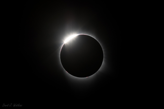 Photo: Total solar eclipse. Photo by David J. Watkins.