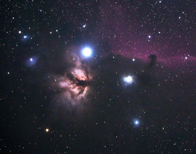 Photo: Horsehead Nebula (Barnard 33) in Orion. Photo by John Burkett